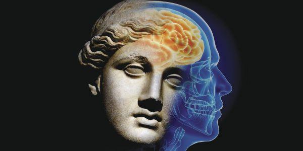 humanidades-ciencia-vocación